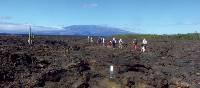 Enjoy walks across the rocky Galapagos Islands landscape   Marta Ticha