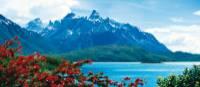 Beautiful scenery in Torres del Paine National Park, Patagonia | Jenn Boyd